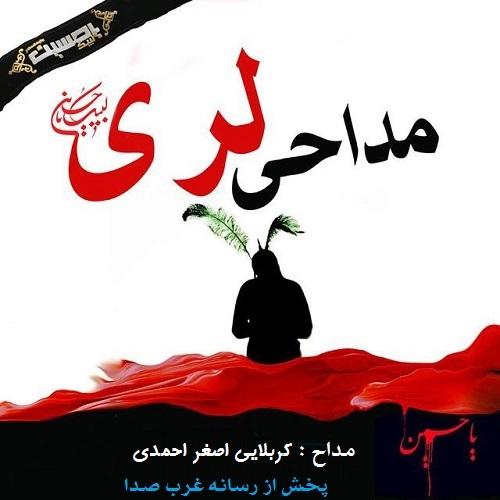دانلود نوحه لری اصغر احمدی به نام هنارس دین